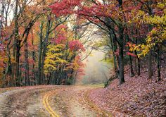 A magical drive on the Blue Ridge Parkway with fall foliage color, near Asheville, NC, in the Blue Ridge Mountains. Fall color guide: http://www.romanticasheville.com/fall.htm