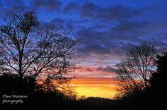December Sunset at Newlands Corner