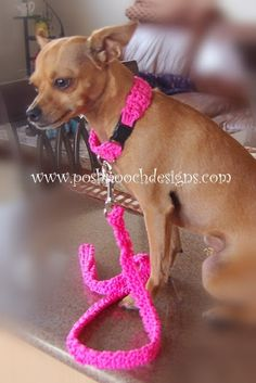 FREE PATTERN...Posh Pooch Designs Dog Clothes: Cord Dog Collar and Leash Free Crochet Pattern