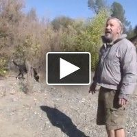 A California man swears that Bigfoot is living in his backyard and harassing him. Real Bigfoot, Bigfoot Sasquatch, Giant Skeleton, Bigfoot Sightings, Cryptozoology, Hairy Men, Creepy, Mystery, Creatures