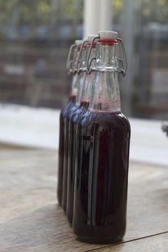 Fermented Elderberry & Honey Soda– a Delicious Probiotic Drink!