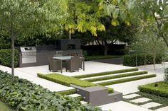 Ivy box and birch.Garden by #peterfudge