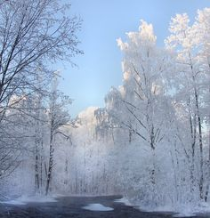 winter in finland. photo by kari liimatainen.