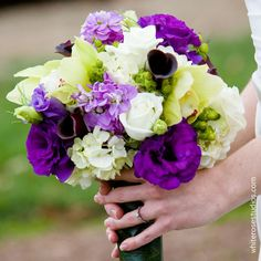 Green hydrangea with purple lisianthus, plum calla lilies, lavender stock, white roses and green cymbidium orchids wrapped in an aspisistria leaf
