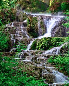Gorman Falls, Colorado Bend State Park. By Glenn Barlow