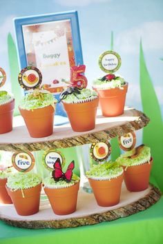 A Bug Inspired Joint Birthday Part - LOVE these cupcakes served in terracotta pots with bugs on top!!