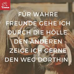 Pferdesprüche & Pferdefuttershop-emma-pferdefuttershop.de(8)