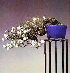 Ikebana, Fruit, Flowers, Spring, Asian Garden, Royal Icing Flowers, Flower, Florals, Bloemen