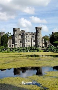 Surrounded by majestic woodland and stunning lakes, County Wexford's Johnstown Castle is a must see during a trip to Ireland's south-east.