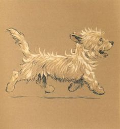 Cecil Aldin 'Mac' 1912 The Adventures of a West Highland Scottish Terrier Print | eBay