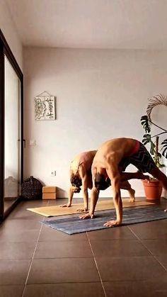 Vinyasa Yoga Poses, Hatha Yoga, Iyengar Yoga, Yoga Sequences, Yoga Meditation, Yoga Flow, Yoga Inspiration, Yoga Fitness, Yoga Sport