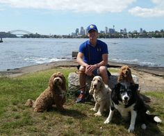 Friday morning group pic at Clarkes Point Reserve Hunters Hill Sydney with Roxy Quintin Amber & Buttons  #bordercollie #cockerspaniels #englishcockerspaniel #redcockerspaniel #cavoodle #dogs #dogsofsydney #sydneydogs #sydneydoggies #clarkespointreserve #huntershill #sydney #petcarer #petservices #dogwalking #sydneydogwalkers #dogwalkers #cutie #mobiledoggydaycare #topcaninemodels #grouppic #mansbestfriends #doglovers #dogofinstagram #dogoftheday #posing #sydneyharbourbridge by petcarer…