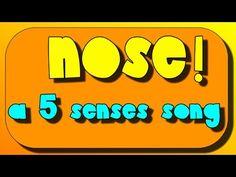 A 5 senses sing-along- Nose and sense of smell Five Senses Preschool, 5 Senses Activities, My Five Senses, Body Preschool, Preschool Songs, Preschool Science, Preschool Lessons, Sensory Activities, September Preschool