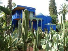 Photo from JO TOURYIT of Jardin Majorelle