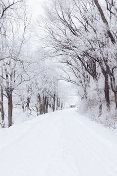 Winter Road Romantic Nature Snow White IPhone 4s Wallpaper