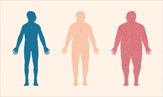 "Is there a correlation between your biome and your BMI? In a radical new book, ""Why Diets Make Us Fat,"" neuroscientist Sandra Aabodt sheds much-needed light on this tangled, cryptic rel…"