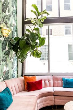 Pink velvet sectional with palm print wallpaper