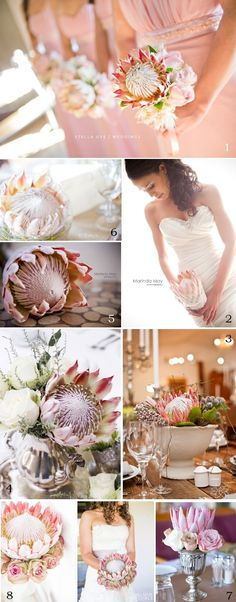 We have some lovilee protea wedding décor inspiration today to compliment the home décor article we did before. Proteas are not only used in bouquets and t Flor Protea, Protea Bouquet, Protea Wedding, Floral Wedding, Wedding Bouquets, Wedding Dress, Chic Wedding, Our Wedding, Wedding Inspiration