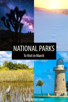Best USA National Parks to visit in March Virgin Islands National Park, Hawaii Volcanoes National Park, Volcano National Park, Rocky Mountain National Park, American National Parks, National Parks Usa, Biscayne National Park, Guadalupe Mountains National Park, Carlsbad Caverns National Park