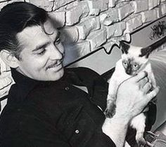 Clark Gable and his siamese cat