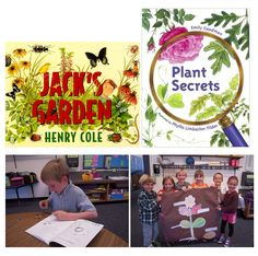 To address NGSS PE 1-LS1-1, students can use the information in these books to enrich their observations of plant parts and create a poster that identifies  key plant structures.