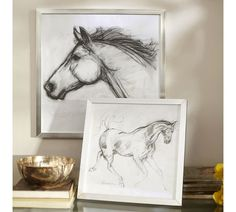 Framed Horse Sketches | Pottery Barn - have del draw for bedroom