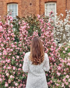 Greenwich Park - Morning walk Sombre Hair Color, Greenwich Park, Magnolia Trees, Long Winter, Flower Backgrounds, Morning Light, Winter Season, Pink Flowers, White Lace