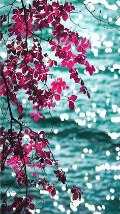 Pink aqua floral leaves bokeh ocean sea view iphone phone wallpaper background lock screen iPhone X Wallpaper 304767099778191617 Wallpapers Android, Cute Wallpapers, Wallpaper Wallpapers, Mobile Wallpaper Android, Flower Wallpaper, Screen Wallpaper, Cool Wallpaper, Wallpaper Samsung, Trendy Wallpaper