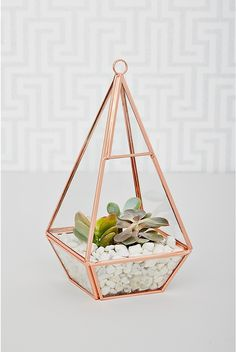 rose-gold-terrarium Want to keep up with the Joneses? Sleek and oh-so on-trend, fill it with your favourite plants and hang by a sunny window.