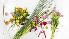 FLERIA | The art of flower arranging.