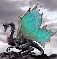 Are you a dragon of magic? A dragon of time? A dragon of dark and menacing power? Could you be a dragon of healing? Or could you be an ice dragon or wyvern? Dragon Skyrim, Dragon Medieval, Dragon Warrior, Female Dragon, Celtic Dragon, Fantasy Kunst, 3d Fantasy, Fantasy World, Fantasy Fairies