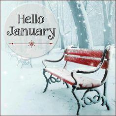 !¡ Hello January