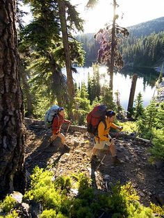 Hike along the Pacific Crest Trail just south of Crater Lake National Park, Oregon. The Pacific Crest Trail runs through California, Oregon and Washington.