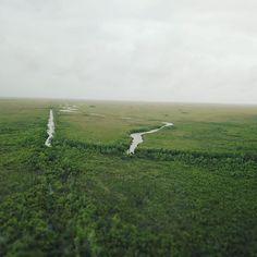 #everglades  #dji #mavicdrone #mavic #djimavicpro #drone #florida #airboat