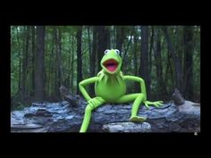 Kermit Don't Want to Live Anymore