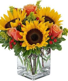 Sicilian Sun Sunflower blooms make a bright & sunny statement with orange-toned roses and accent berries in our cube vase. Adorably charming and perfect for work, home or hospital. Sunflowers And Roses, Fall Flowers, Summer Flowers, Beautiful Flowers, Wedding Flowers, Flowers Garden, Sun Flowers, Flower Gardening, Tropical Flowers