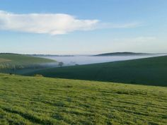 #Mist on the South Downs #yourweather