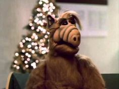 Yes, there was an ALF Christmas Special back in the day. ALF meets a dying girl, delivers a baby and talks a man down from jumping off a bridge. If you don't get a little teary eyes wight this one, you have no Christmas Spirit! Alien Life Forms, Christmas Episodes, Teary Eyes, Delivering A Baby, Man Down, Christmas Stuff, Bridge, Childhood, March
