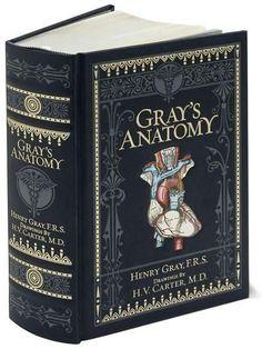 gray-s-anatomy.jpg 446×595 pixels