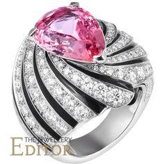diamantes safira gosta de luxo no Instagram