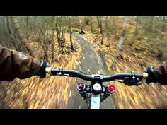Downhill mountain biking at The Lookout (Swinley Forest) - GoPro HD....HIGHLIGHT= THE AWESOME DOG! (Hungarian Vizsla)