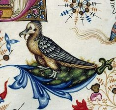 Angry bird. Breviary of Mary of Savoy, Lombardy ca. 1430 (Chambéry, Bibliothèque municipale, ms. 4, fol. 443r)
