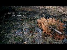 ▶ David Sylvian - September - YouTube