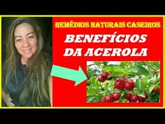 Benefícios da Acerola   Descubra a Importância da Acerola Para Saúde