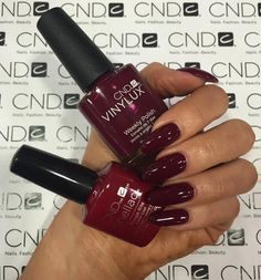cnd shellac contradictions - Google Search