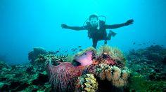 Pulau Redang Private Island Beach Resorts Malaysia - The Taaras Resort