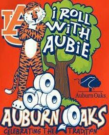 #WarEagle  #Aubie  #AuburnFootball     For Awesome Sports Stories and Audio Podcast, Visit our Blog at www.RollTideWarEagle.com
