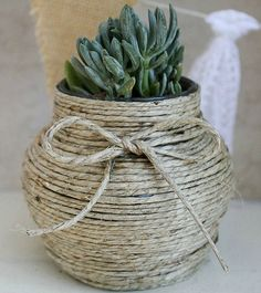 Click pic for 29 Spring Container Gardening Ideas - Make Your Own Hemp-Wrapped Jar with Succulents - Indoor DIY Gardens