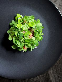© Signe Birck. Dish by chef Mads Refslund at ACME. Exclusive interview with the photographer here: http://theartofplating.com/editorial/spotlight-photographer-signe-birck/