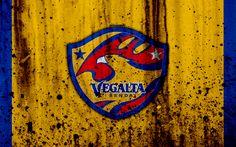 Download wallpapers FC Vegalta Sendai, 4k, logo, J-League, stone texture, Japan, Vegalta Sendai, soccer, football club, Vegalta Sendai FC